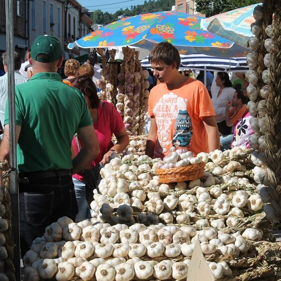 Feria del ajo San Miguel de las Dueñas