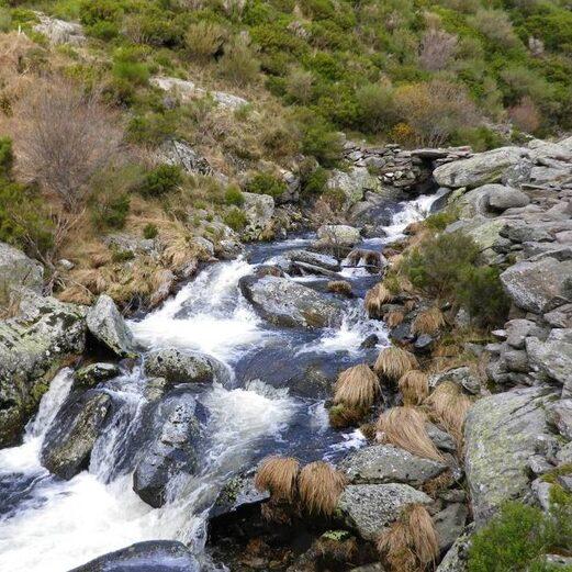 Cañon del Río Forcadura